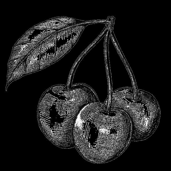 artist3-process-cheries